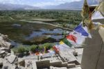 Thumbnail View from Shey monastery on the Indus plateau, river oasis with fish pond in front of the monastery, Ladakh, Himalayas, India, Asia