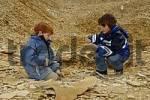 Thumbnail Eichstaett Eichstaett in the Altmuehltal Altmuehltal Upper Bavaria Germany children are collecting and searching for fossils in the Sollnhofner Kalkstein Platten