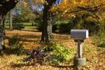 Thumbnail Mailbox and autumn colours