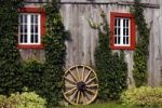 Thumbnail Vine covered shed with old wooden wagon wheel, Quebec, Canada