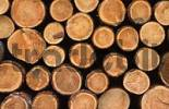 Thumbnail Pile of wood