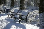 Thumbnail Snow-covered benches