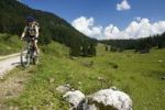 Thumbnail Mountain biker riding along an alpine pasture, Styria, Austria