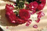 Thumbnail Rose ambience