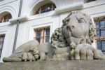 Thumbnail Lion sculpture in front of the Stadtschloss, city palace, Weimar, Thuringia, Germany, Europe