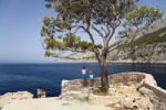 Thumbnail Viewpoint on the coast, Zavala, Hvar Island, Dalmatia, Croatia, Europe