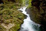 Thumbnail Vintgar Gorge Triglav National Park near the town Bled in Slovenia