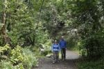 Thumbnail Couple walking on a path through the woods, Cubo de la Galga, El Canal y Los Tilos Biosphere Reserve, La Palma, Canary Islands, Spain