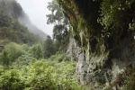 Thumbnail Cubo de la Galga, El Canal y Los Tilos Biosphere Reserve, La Palma, Canary Islands, Spain