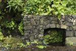 Thumbnail Spring, Fuente de los Poleos near Barlovento, La Palma, Canary Islands, Spain