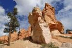 Thumbnail Limestone formation, Hoodoos, Bryce Canyon National Park, Utah, USA