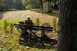 Thumbnail old lady woman on park bench on east cemetary Munich Bavaria Germany