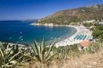 Thumbnail Bay of Cavoli, Island of Elba, Tuscany, Italy, Mediterranean Sea, Europe