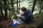 Thumbnail Geocacher lifting a cache, near Oberried in the Black Forest, Germany, Europe