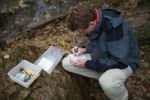 Thumbnail Geocacher writing in a logbook, Wutachschlucht Gorge, Black Forest, Germany, Europe