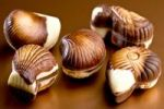 Thumbnail Belgian chocolate seashells