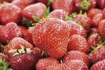Thumbnail Strawberries, full-frame