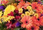 Thumbnail Colourful flower arrangement