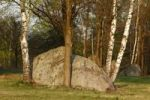 Thumbnail Block heath in Gmuend, Waldviertel, Lower Austria, Austria, Europe