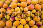 Thumbnail apricots