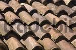 Thumbnail roof landscape