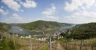 Thumbnail View over the wine town of Oberwesel am Rhein with the Winfried Persch winery, the Oxen Tower, the Church of St. Martin and the Church of Our Dear Lady, in front of Schoenbrunn Castle, Oberwesel,