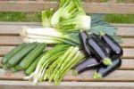 Thumbnail Green asparagus, eggplants, zucchini, spring onions, fennel, leeks