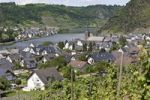 Thumbnail View on the the Moselle town of Alken, Rhein-Hunsrueck-Kreis district, Rhineland-Palatinate, Germany, Europe