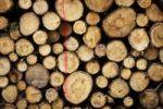 Thumbnail Stack of wood