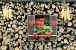 Thumbnail Replica of a window with hearts, shutters, geraniums and corn cobs in a stack of firewood, Slovenia, Europe