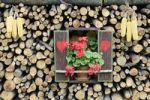Thumbnail Fensternachbildung mit Herzchen, Fensterläden, Maiskolben und Geranien in einem Brennholzstapel, Slowenien, Europa