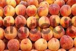 Thumbnail Fruit peach Prunus persica