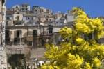 Thumbnail Spring time in Modica Italy