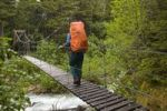 Thumbnail Female hiker with backpack crossing suspension bridge over Taja River, near historic Canyon City, Pacific Northwest Coastal Rain Forest, Chilkoot Trail, Chilkoot Pass, Alaska, USA
