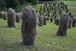 Thumbnail Haystacks, haymaking, Zillertal valley, North Tyrol, Austria, Europe