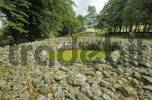 Thumbnail stone circle near by Iverness Scotland