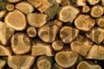 Thumbnail firewood