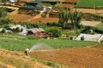 Thumbnail Irrigation, farmer working in the field, Dalat, Central Highlands, Vietnam, Asia