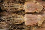 Thumbnail Dried squid at a fish market in Kyoto, Japan, East Asia, Asia