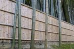 Thumbnail Bamboo fence in a bamboo forest in Daishin-in Temple, Kyoto, Japan, East Asia, Asia
