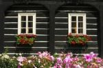 Thumbnail Windows decorated with flowers on a traditional Umgebindehaus, house in traditional building style, Vsemily, Bohemia, Czech Republic, Europe