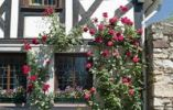 Thumbnail Roses at a half-timbered house, Germany