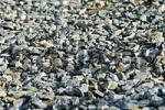 Thumbnail pebbles