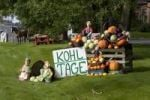 Thumbnail Vegetable stall of a farm, at a road, North Frisia, North Germany, Germany, Europe