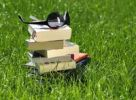 Thumbnail Stacked books and sunglasses on a meadow