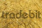 Thumbnail close up of a bale of straw