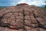 Thumbnail Mountain of 1000 turtles, sandstone, Qianguishan, Liming, China, Asia