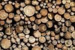 Thumbnail stack of wood , Bavaria, Germany