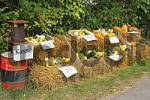 Thumbnail sale of cucurbits at the road-side
