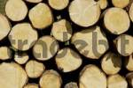 Thumbnail piled up sawed logs, stack of wood